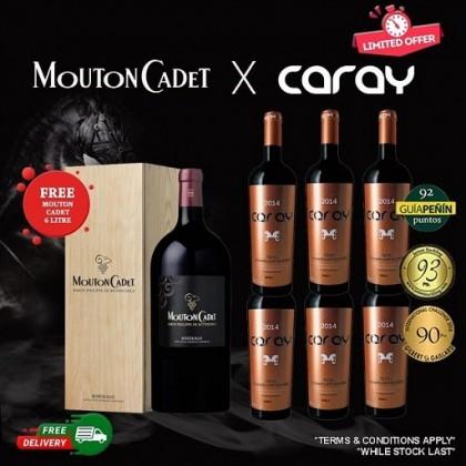 Caray 14 Mths *6 + Mouton Cadet 6L